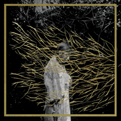 forest_swords-engravings