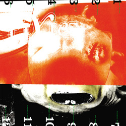 Pixies, Head Carrier